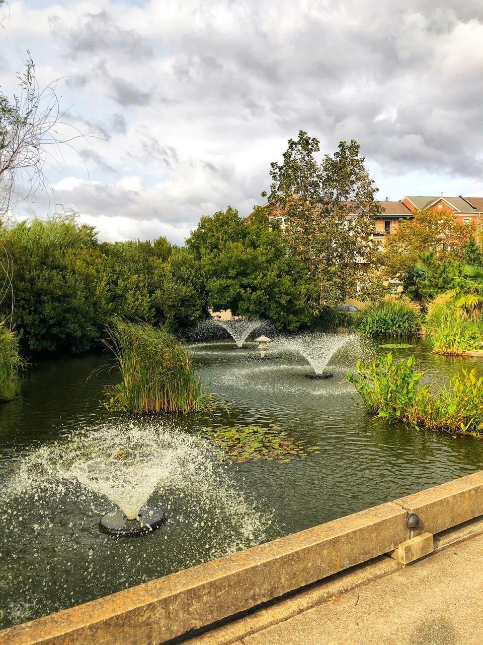 Virginia Garden Water fountain