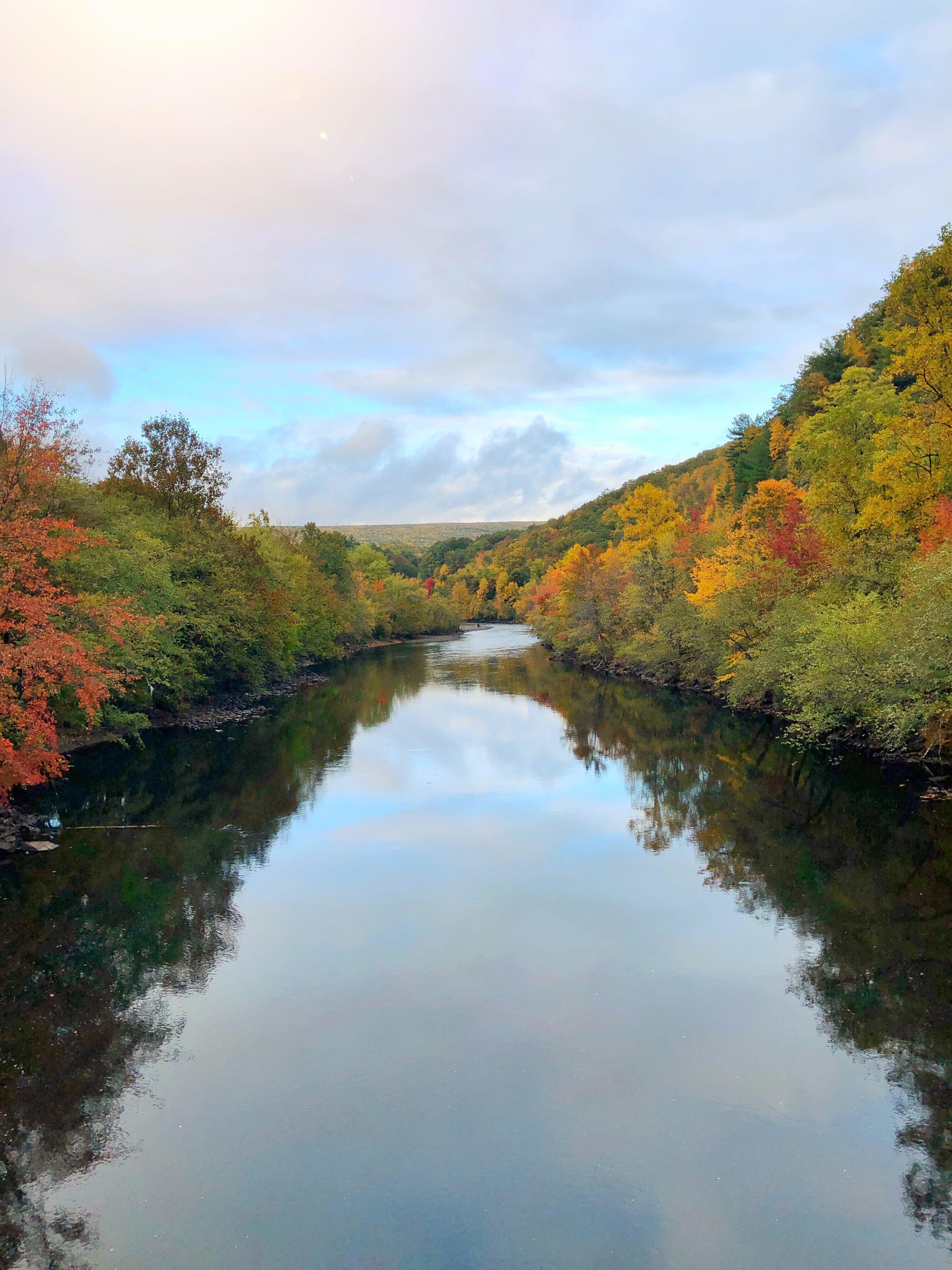 Fall Foliage Jim Thorpe