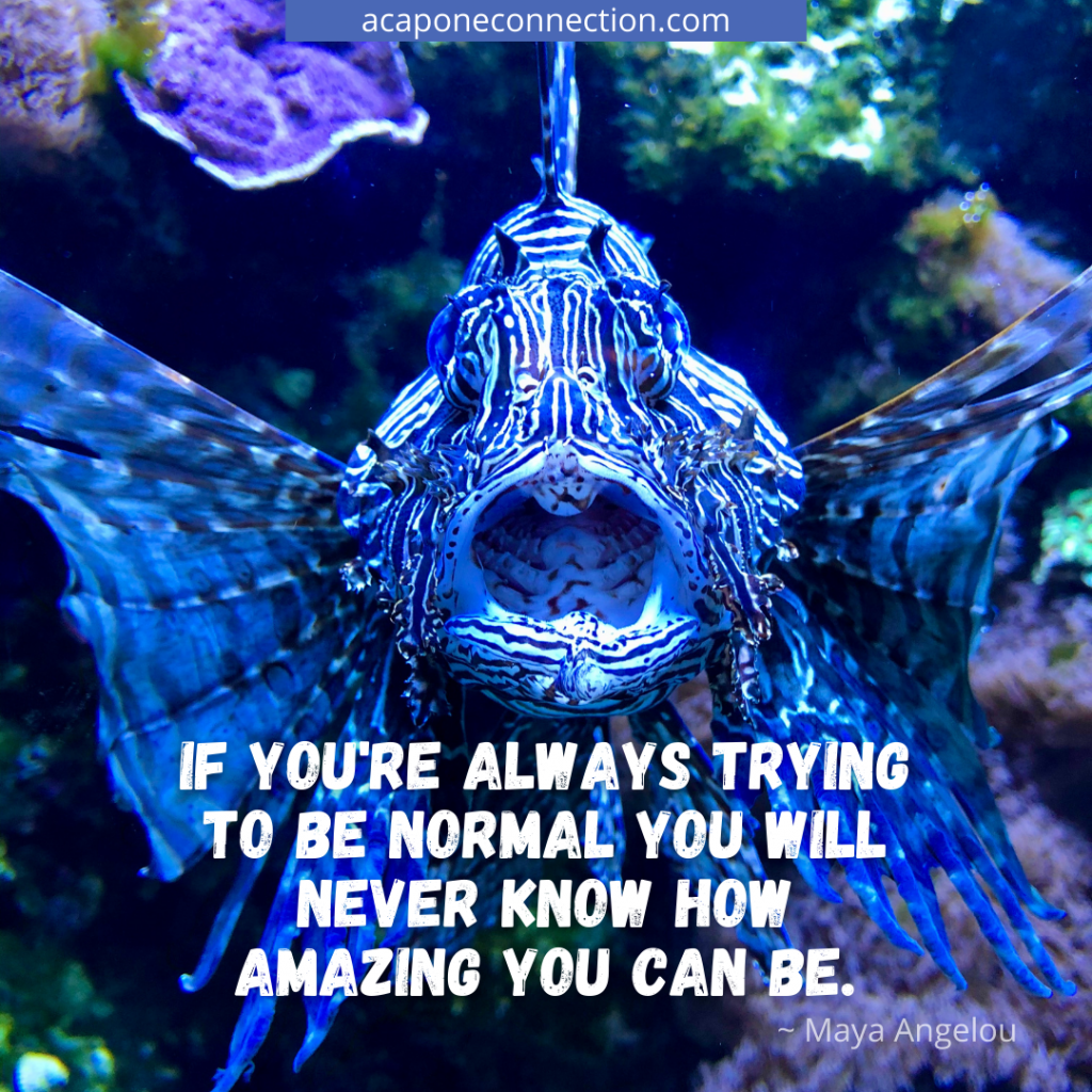 Inspirational Quote about being normal