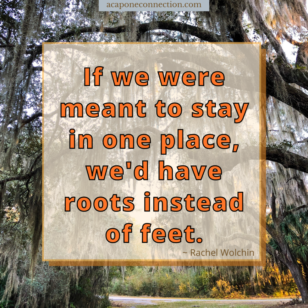 Inspirational Quote about not staying in one place